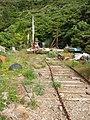 Old slipway, Whakatahuri Bay - panoramio.jpg