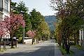 Omachi onsen-kyo02s3.jpg