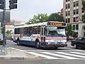 Orion Bus 42 Mt Pleasant.jpg