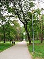 Ostroleka-park8.jpg