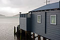Otago Peninsula boat sheds series 5, 28 Aug. 2010 - Flickr - PhillipC.jpg