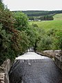 Outflow from Hill Loch, Stobo - geograph.org.uk - 1475487.jpg