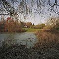 Overzicht over de veenplas richting directiewoning - Frederiksoord - 20382086 - RCE.jpg