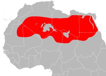 Sahara Desert ecoregion map