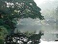 Panorama SGNP 01.jpg