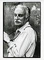 Paolo Monti - Serie fotografica (Modena, 1973) - BEIC 6346975.jpg