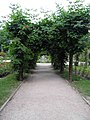 Parc de la Pépinière (Nancy) (1).jpg