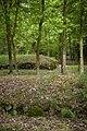 Park Krajobrazowy, grobowce z neolitu, Wietrzychowice - panoramio.jpg