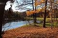 Park Pałacowy. - panoramio (7).jpg