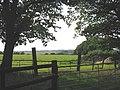 Pastures, Little Burstead, Essex - geograph.org.uk - 49503.jpg