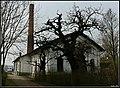 Paszab, 4475 Hungary - panoramio (2).jpg