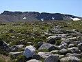 Path up Coire an Lochain - geograph.org.uk - 1374241.jpg