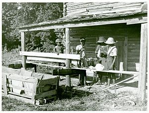 Manning, South Carolina - Pauline Clyburn, rehabilitation client, and her children stringing tobacco, photographed by Marion Post Wolcott (June 1939)