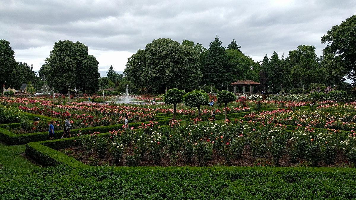 peninsula park wikipedia - Portland Rose Garden