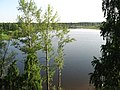 Pervomaysky District, Tomsk Oblast, Russia - panoramio (68).jpg