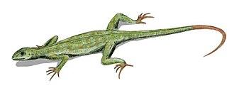 Diapsid - Life restoration of an araeoscelidian (Petrolacosaurus kansensis)