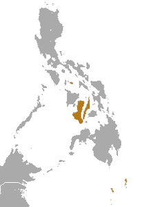 Philippine Tube-nosed Fruit Bat area.png