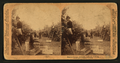 Picking oranges, Riverside, California, U.S.A, from Robert N. Dennis collection of stereoscopic views 2.png