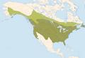 Picoides pubescens distr.png
