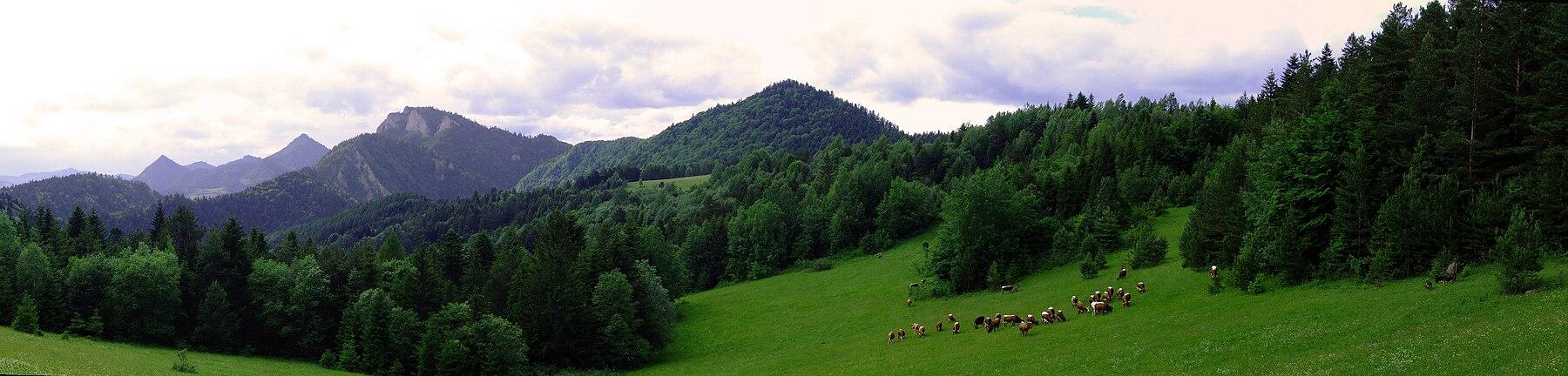 Pieniny (panorama).jpg