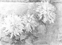Piet Mondriaan - Three chrysanthemum blossoms - A107 - Piet Mondrian, catalogue raisonné.jpg