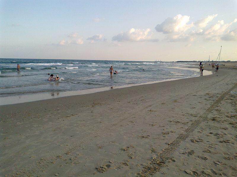 השקמה בחוף ינאי