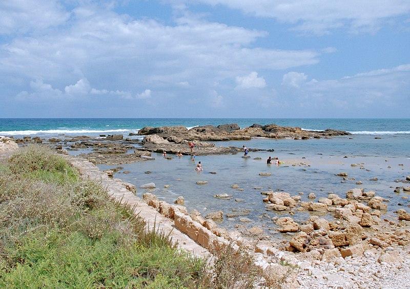 חוף דור נחשולים