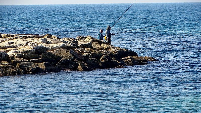 דייגים במפרץ שדות ים