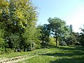 Pillich Mini-Arboretum. - Simontornya, Hungary.JPG