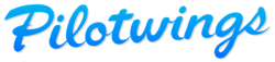Pilotwings series logo.png