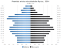 Piramida wieku Pyrzyce.png