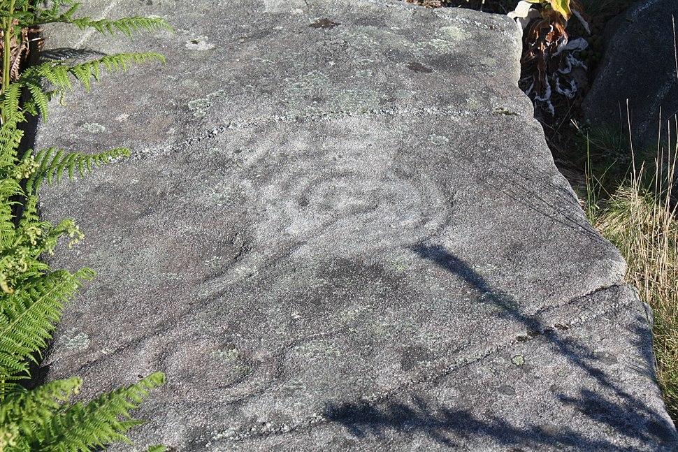Poio, Samieira, petroglifo do Outeiro da Tartaruga 01-01
