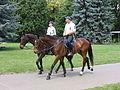 Police on Horse Budapest 013.jpg