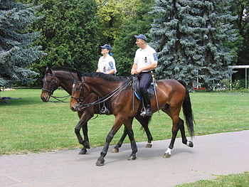 Mounted police in Budapest