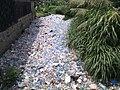 Pollution plastique à Douala.jpg