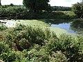 Pond by Manor Farm, Hoggeston - geograph.org.uk - 235248.jpg