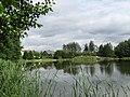 Posejnele, jezioro Samoṅ - panoramio (124).jpg