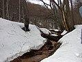 Potok pod zrubom - panoramio.jpg