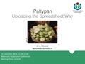 Presentation Pattypan, WCN 2016.pdf