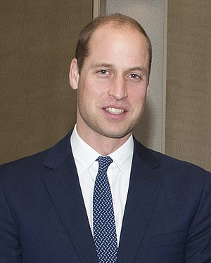 Prince William, Duke of Cambridge - The Duke of Cambridge in November 2016