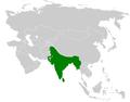 Pycnonotus cafer distribution map.png