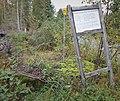 Pylvänälän-Joutsan tien muistokivi (noin 1880) - Kuupelontie (14) - Kangasniemi - 1.jpg
