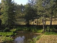 Radlo-natural-monument02.jpg