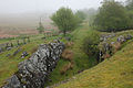 Railway cutting east of Pont Rhyd-y-fen - geograph.org.uk - 1325027.jpg