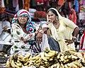 Rajasthan (6331444879).jpg