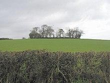 Resti di un forte ad anello di terra (ráth) a Shannaragh, Contea di Tyrone, Irlanda del Nord