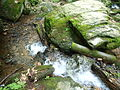 Rešovské vodopády6.JPG