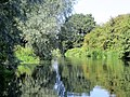Reflections in the Nene at Yarwell - August 2013 - panoramio.jpg