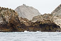 Remains of Farallon Islands Light in 2014.jpg