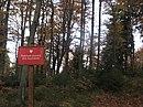 Rezerwat Stok Szyndzielni nature reserve Poland.jpg